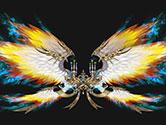 高阶翅膀:雏鹰圣歌